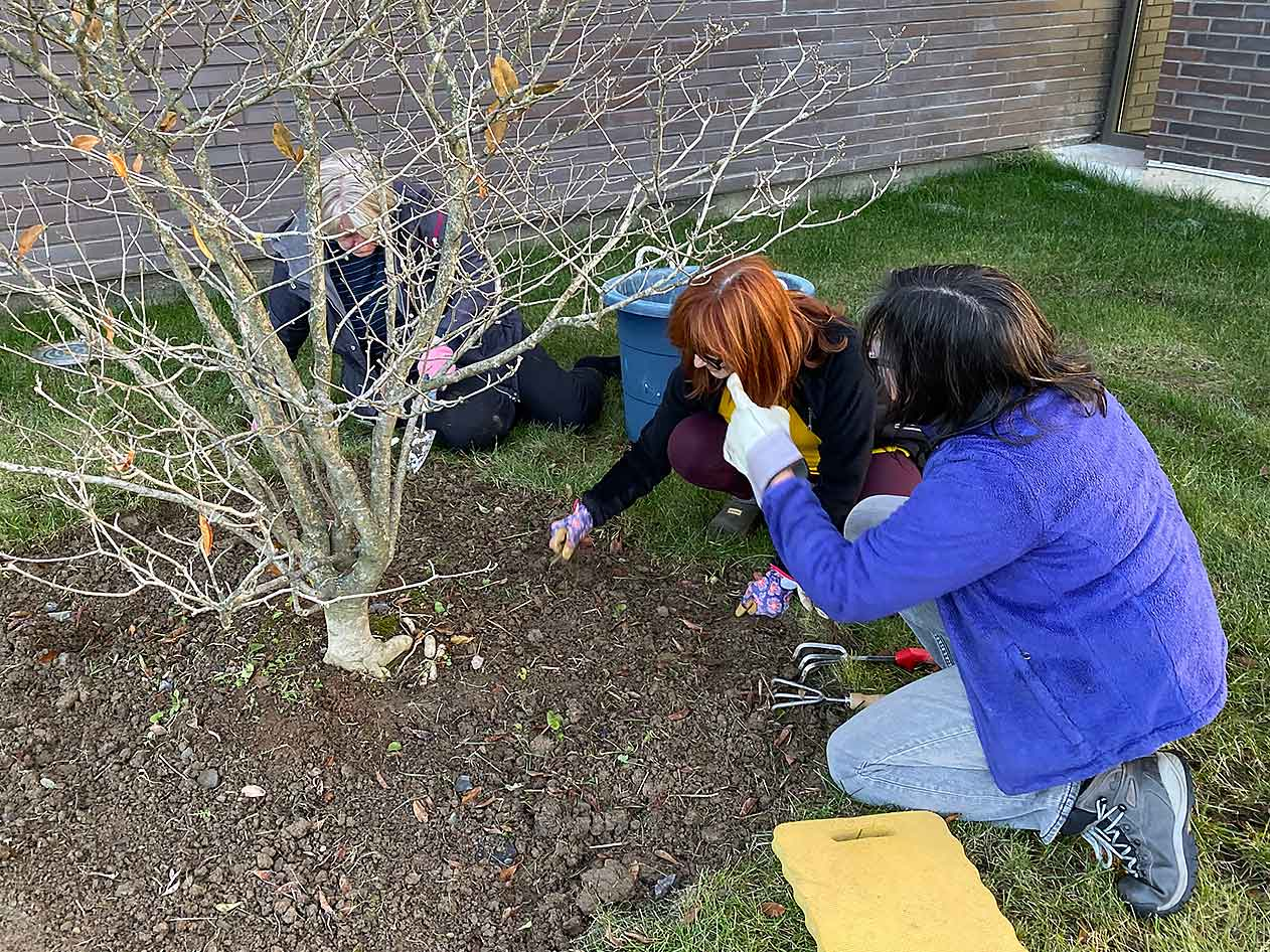 Community Garden | Friedman JCC | The Center For Everyone